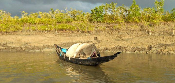 Boat - Sundarban, India