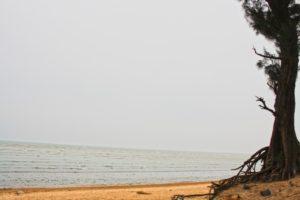 Chandipur Beach in Balasore, Orrisa, India