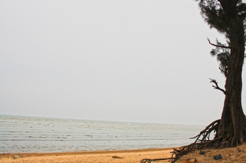 Chandipur Beach in Balasore, Orrisa, India